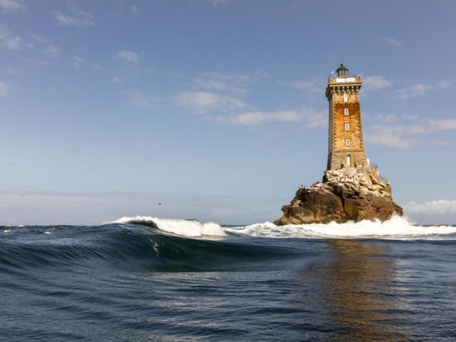 naviguez-aupres-des-dauphins-phares-et-oiseaux-2.jpg