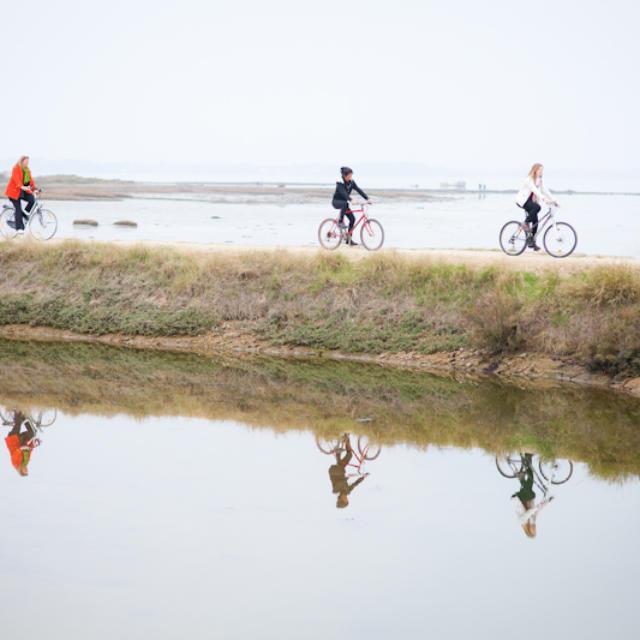Parcourez les marais salants à vélo