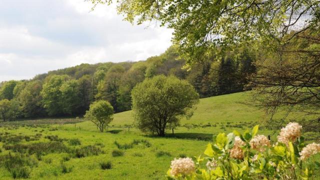 seglien-paysage-michel-langle.jpg