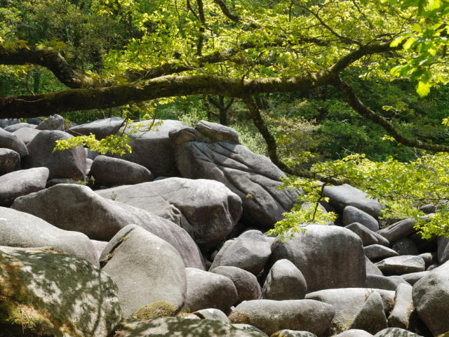 Vue sur les Gorges du Corong