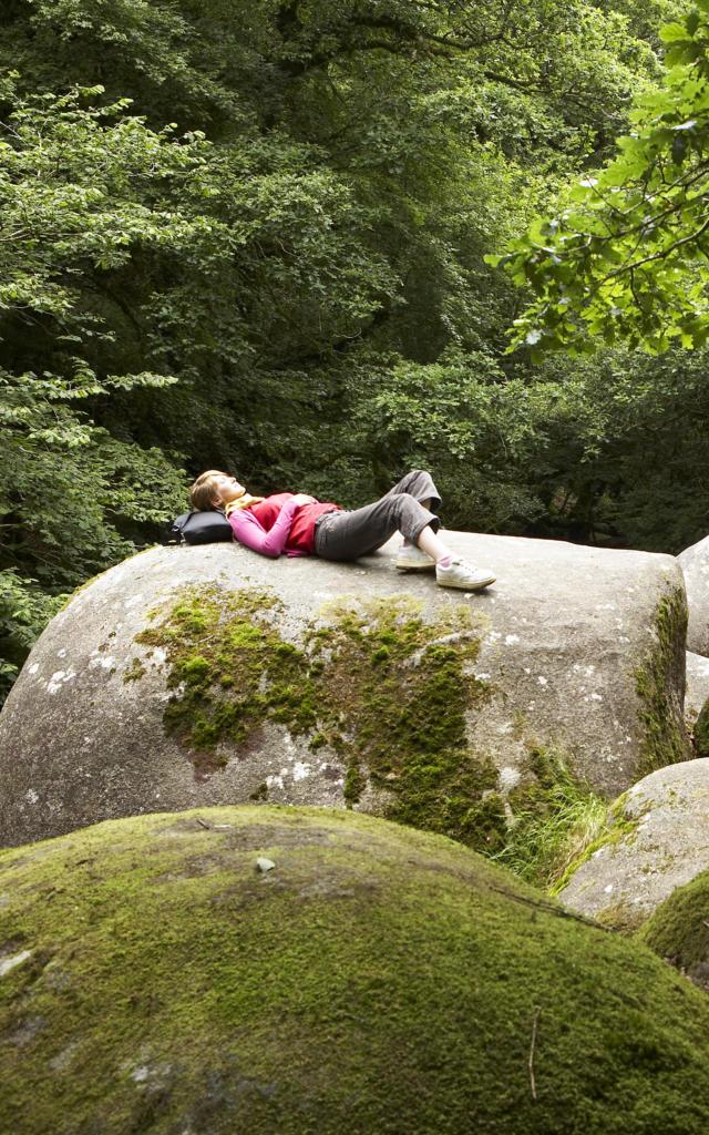 Vue sur les Gorges du Toul Goulic - Centre Bretagne