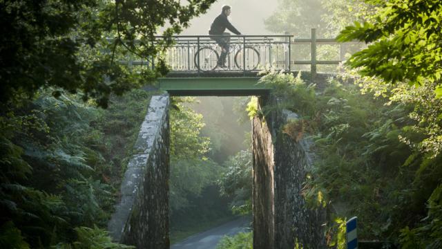 Vue sur le pont de la voie verte dans les landes de Lanvaux à Molac