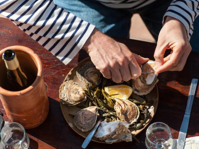 Dégustation d'huîtres